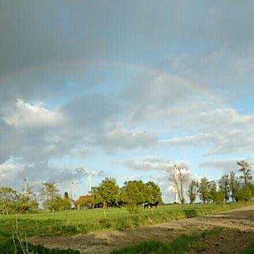 Regenbogen in Buttforde im Mai
