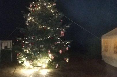 Weihnachtsbaum 2019